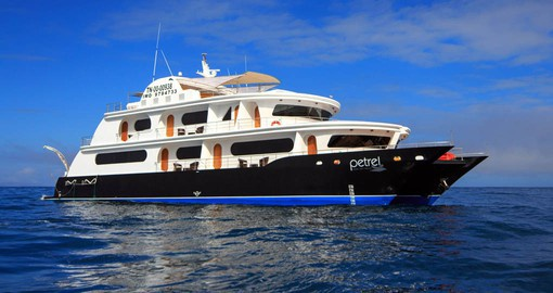 The newly built Petrel offers the best way to experience the Galapagos