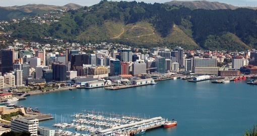 Wellington Harbour taken from Mount Victoria