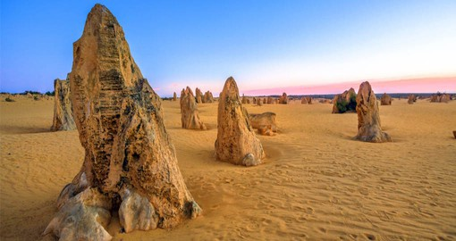 The Pinnacles are natural limestone formations and are one of Australia's most intriguing landscapes