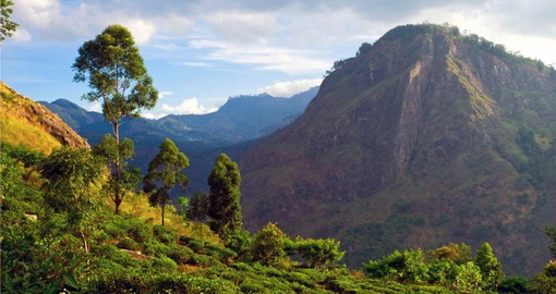 Experience magnificent Ella Rock on your Sri Lanka vacation