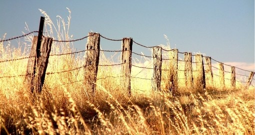 Rural fencing in the outback