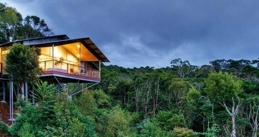 Experience O'Reilly's Rainforest Retreat during your Australia vacations.