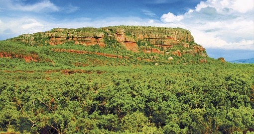 Hike through the dense foliage to Nourlangie and immerse yourself in nature on your Australian Tours