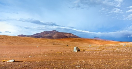Explore the Altiplano on your trip to Peru