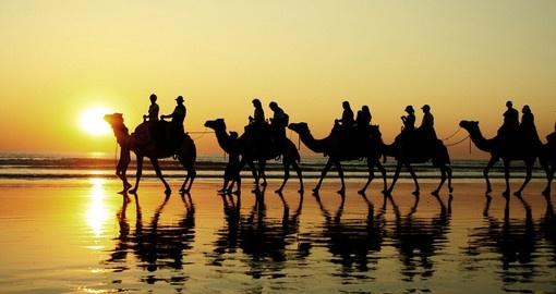 Experience riding a camel on the Cable Beach during your next Australia tours.