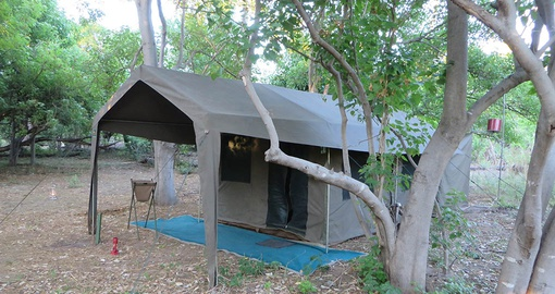 Relax in your spacious tent on your Safari in Botswana