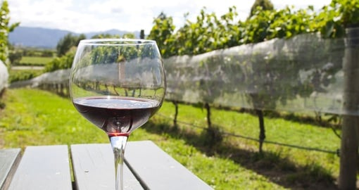 Enjoy delicious food and wine in Hawke's Bay on your New Zealand Vacation