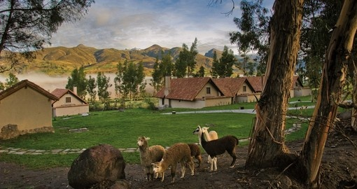 Stay at Las Casitas Colca Canyon on your Peru Tour