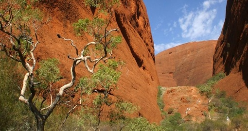 Valley of Winds, Uluru