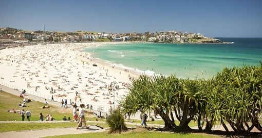 Your Australia vacation includes a trip to Bondi Beach.