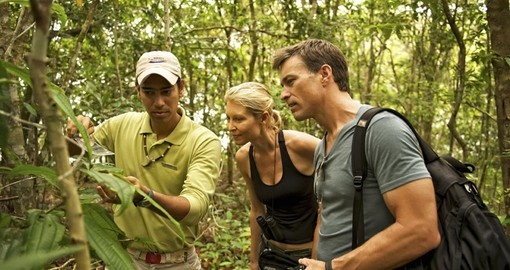Experience the Amazon on your Brazil Tour
