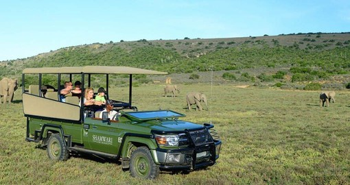 The Kids on Safari programme will keep them entertained and also teach them the importance of nature conservation