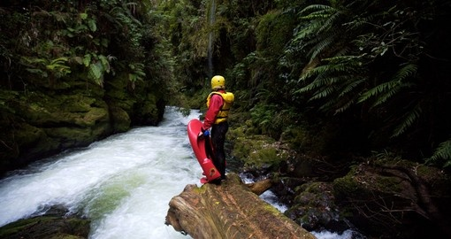 Go Sledging along the Kaituna River during your New Zealand tour.