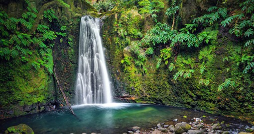 On the eastern edge of Sao Miguel, Salto do Prego Waterfall is in a natural rainforest