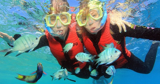 Try snorkeling in the Great Barrier Reef on your Australia Tour