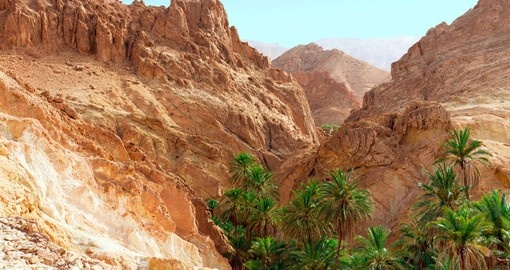 Explore the Mountain oasis in western Tunisia in Tozeur Governorate