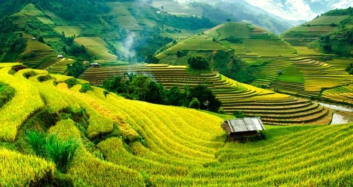 Rice fields in Mu Cang Chai