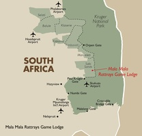 Mala Mala Rattrays Game Lodge