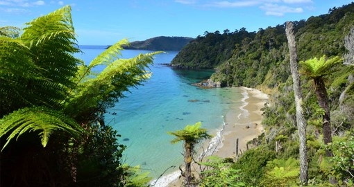30 kilometres south of the South Island, Stewart Island is a unique part of your New Zealand tour