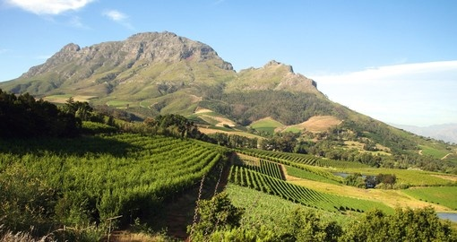 Visit the Franschhoek wine region, one of South Africa's oldest during your South African vacation