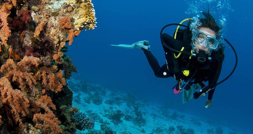 Go scuba diving on your Belize vacation