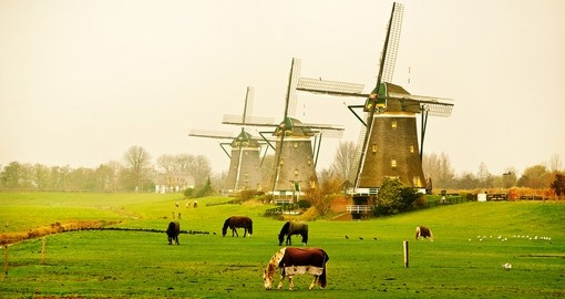 You will visit beautiful Dutch windmills during your Netherlands vacation.