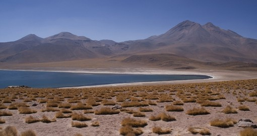Visit Lake Miscanti on your South America Tour