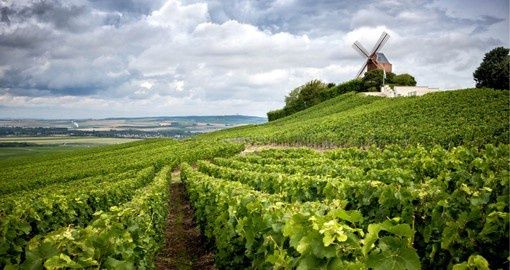 The Champagne region is known for the sparkling wine that bears its name