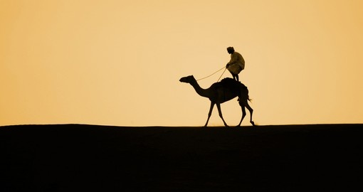 Camel surfing