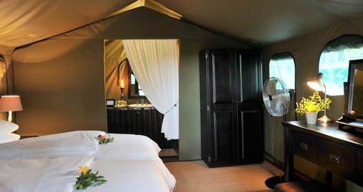 Twin Safari Suite