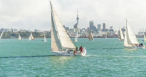 Visit Auckland, the city of sails