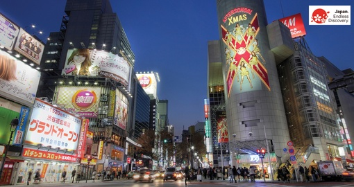 Enjoy the bright lights of Tokyo on your Japan tour