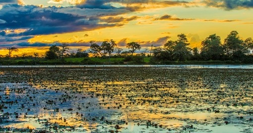 Colorful sunset in Pantanal