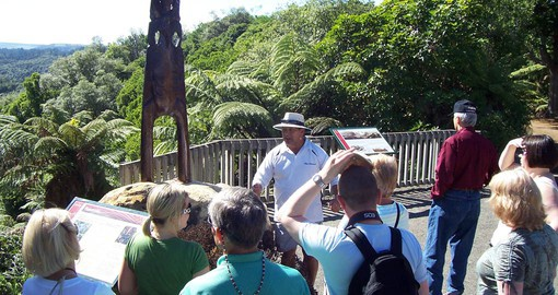 Learning about Maori history and culture on your New Zealand Vacation