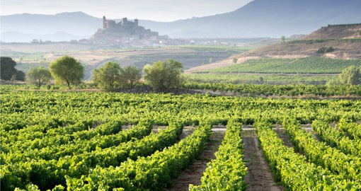La Rioja is Spain best know wine region and produces some of the country's finest vintages