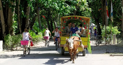 On La Digue Island there are few cars, but bicycles and ox carts are a common form of transport