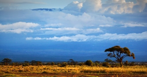 Continue your Tanzania safari and experience the magnificent Mount Kilimanjaro