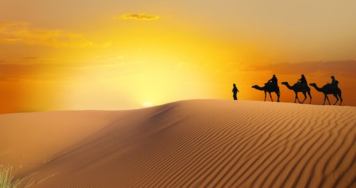 Travel the Saharan Dunes