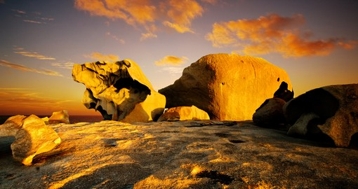 highlights of kangaroo island hotel australian tours