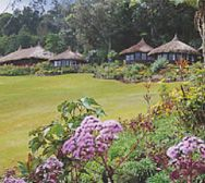 Ambua Lodge grounds