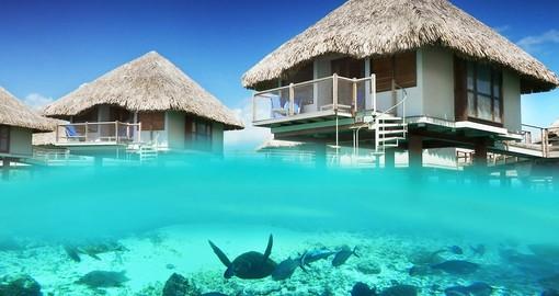 Bora Bora Vacations Incl Airfare Bora Bora Vacation Goway