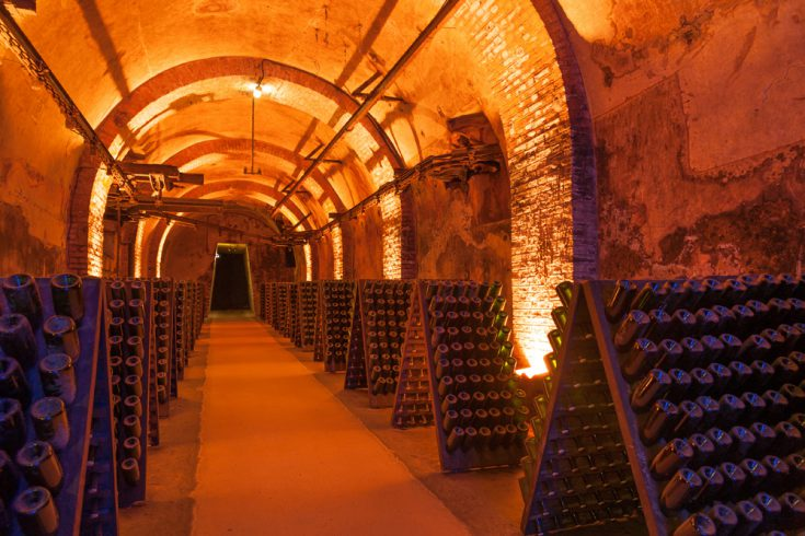 Rows of champagne bottles during fermentation process in a cellar in Reims