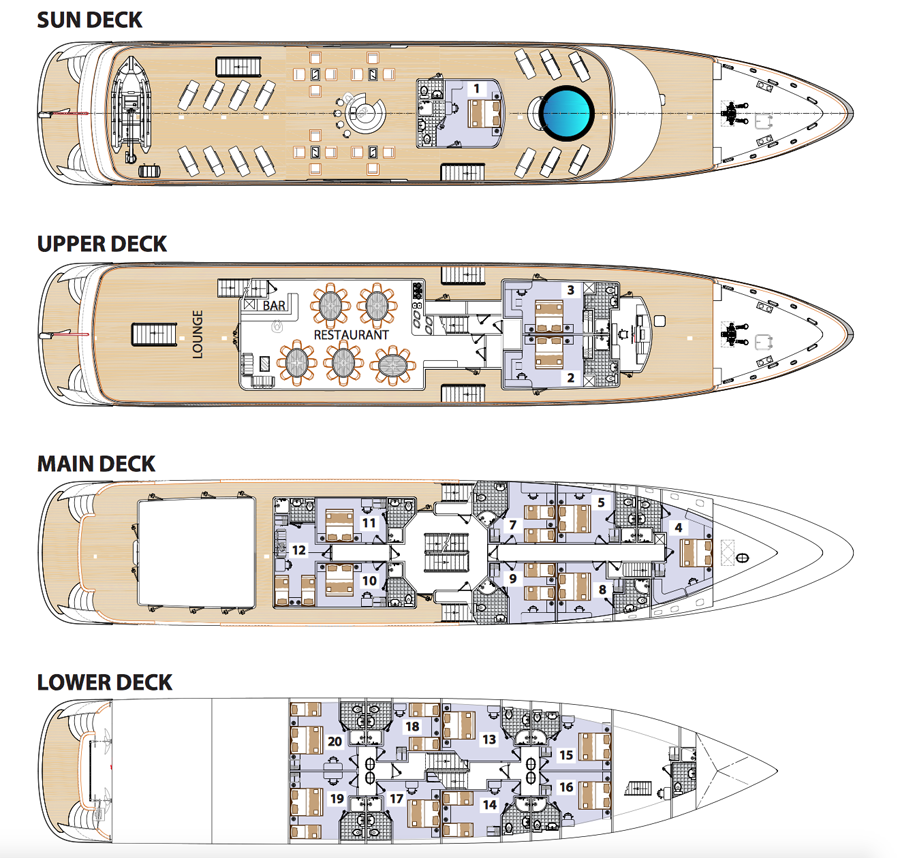 MS Deck plan